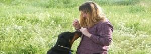 Train Your Rottweiler Positive Reinforcement